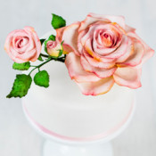 Zuckerblumen Zubehör