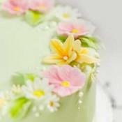 Torten-Dekorationskurs